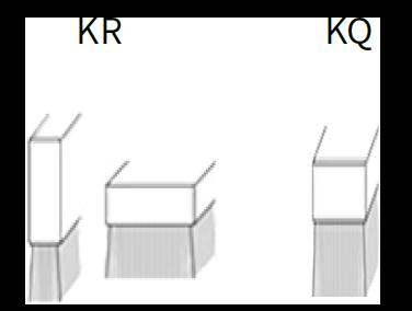Leistenbürsten KR KQ